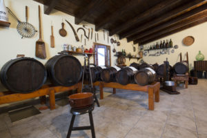 Visit the family vinegar works, Balsamic vinegar of Modena