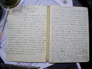 Appunti Storici su vendemmia e Aceto Balsamico
