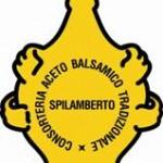 Traditionellen Balsamessig aus Modena